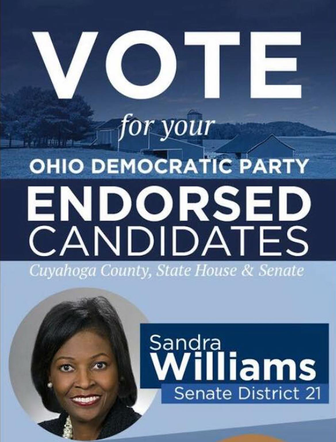 Sandra Williams, Willoughby Avenue, The Five Fifths, KOLUMN Magazine, KOLUMN, African American Politics, Blacks in Politics, Black Vote, Vote Black